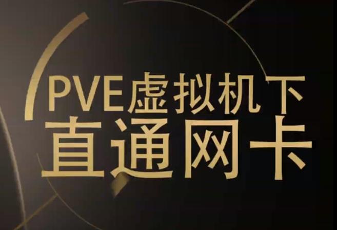 PVE系列六:硬件分组直通