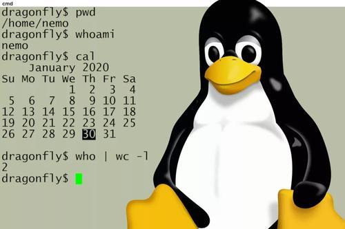 linux使用篇一:linux命令的使用大法